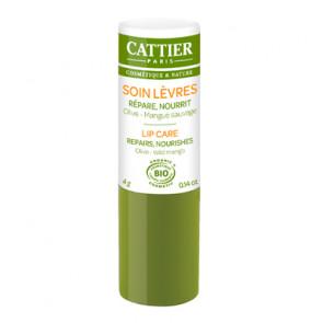 cattier-Lippenpflege-Olive-Mango-guntsig.jpg